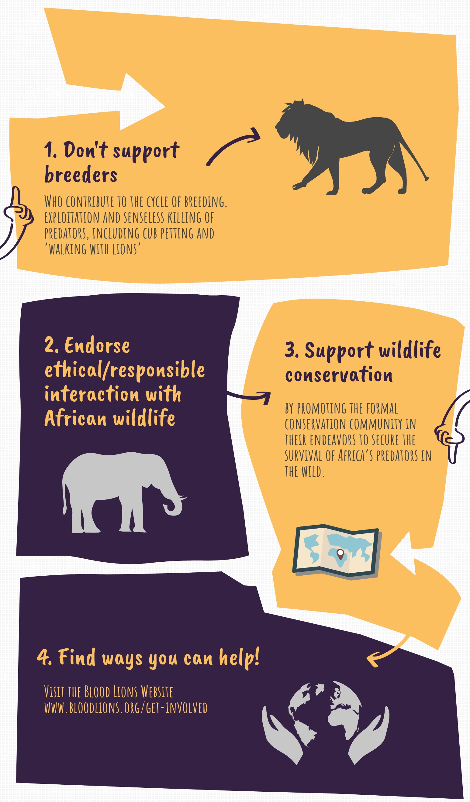 Blood Lions infographic
