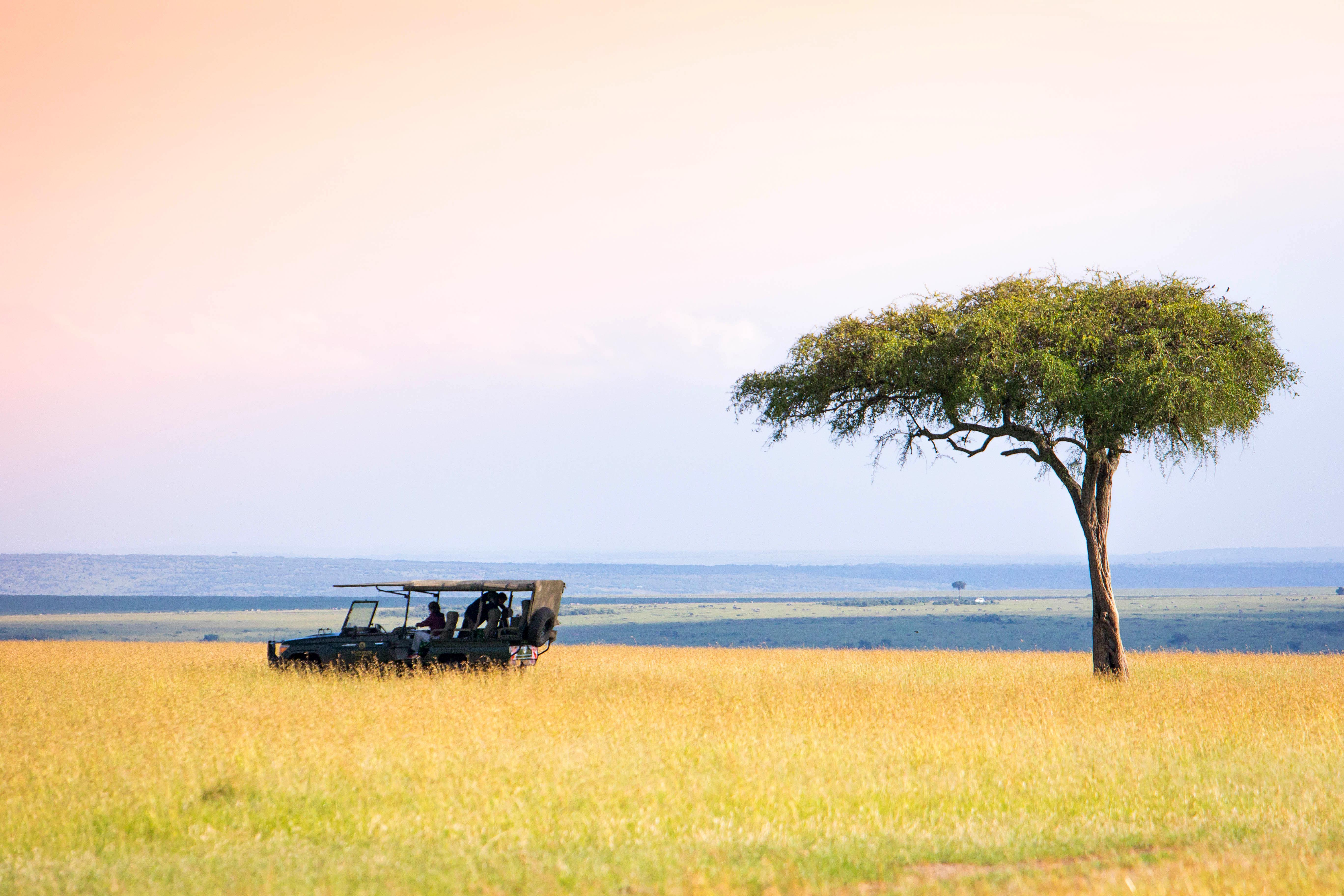 Jeep in Masai Mara