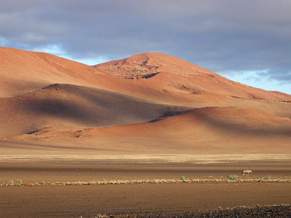 Sossusvlei dunes and lone gemsbok