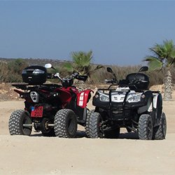 Motorcycle | quad bike