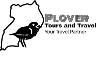 PLOVER TOURS AND TRAVEL