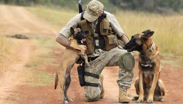 Ranger and K9 in South Africa